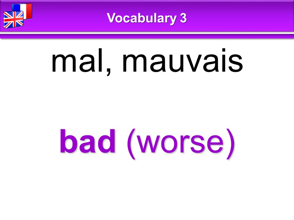 bad (worse) mal, mauvais Vocabulary 3