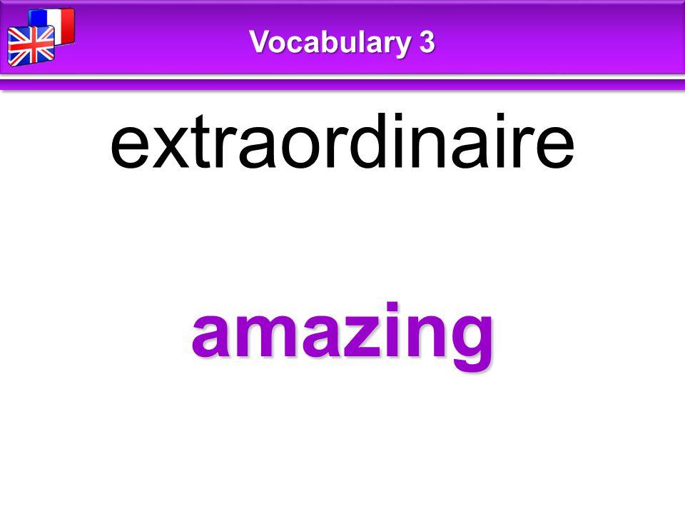 amazing extraordinaire Vocabulary 3