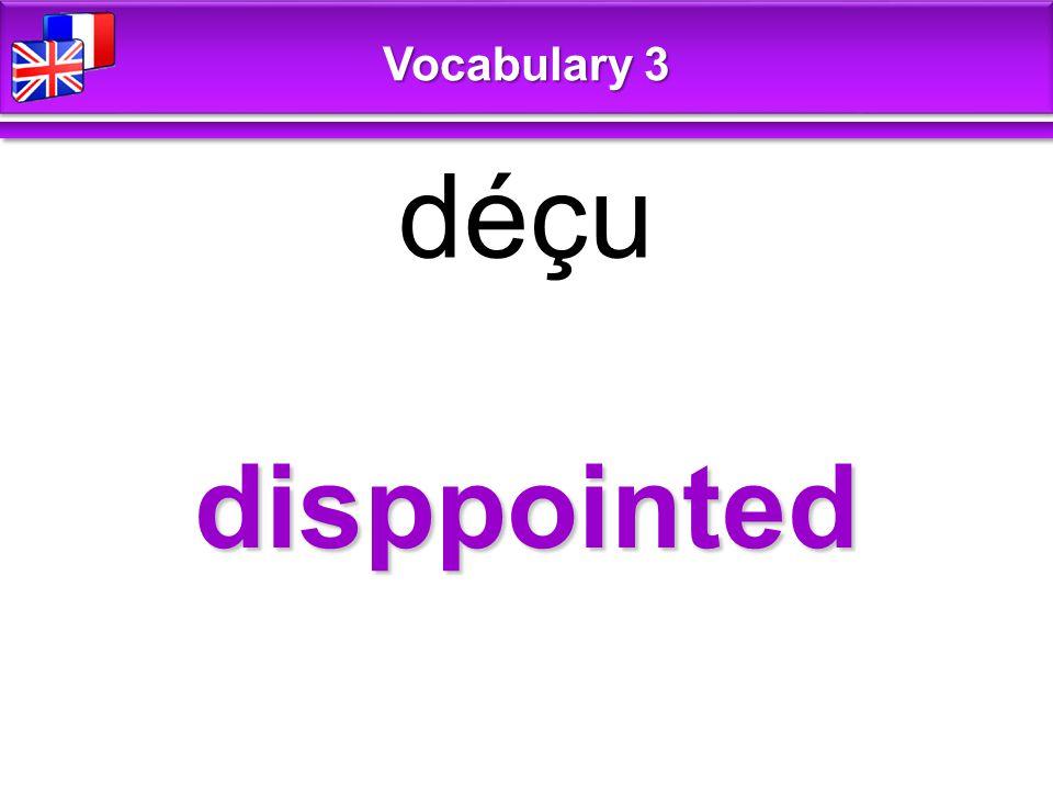 disppointed déçu Vocabulary 3