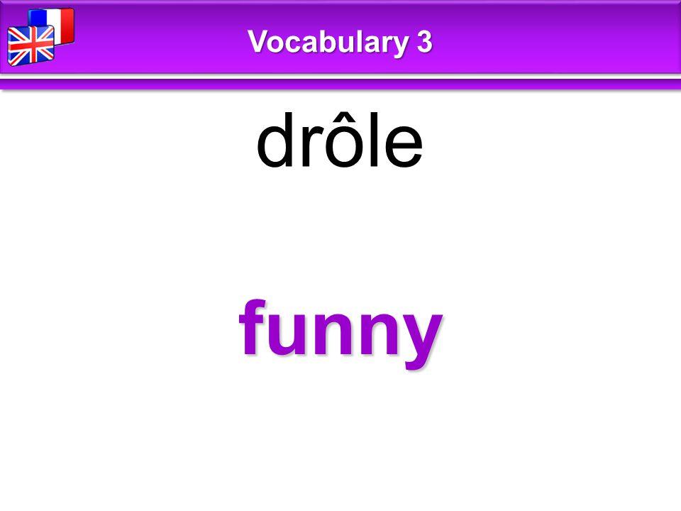 funny drôle Vocabulary 3