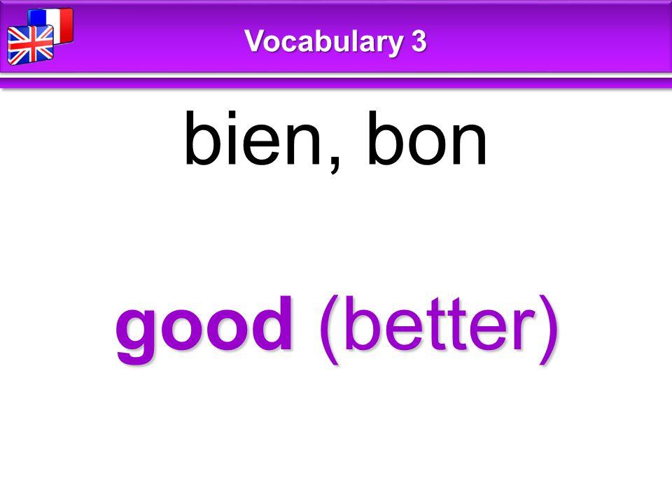 good (better) bien, bon Vocabulary 3