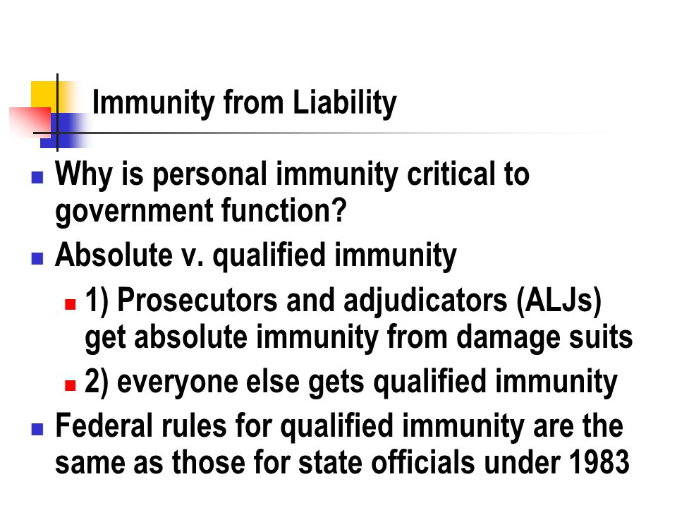 Immunity from Liability Why is personal immunity critical to government function.