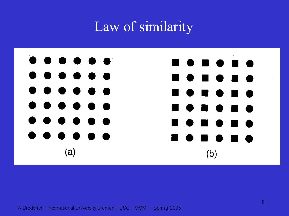 A.Diederich– International University Bremen – USC – MMM – Spring 2005 8 Law of similarity