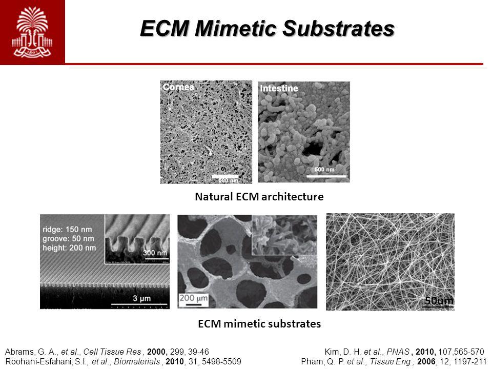 ECM Mimetic Substrates Abrams, G. A., et al., Cell Tissue Res, 2000, 299, 39-46 Kim, D. H. et al., PNAS, 2010, 107,565-570 Roohani-Esfahani, S.I., et