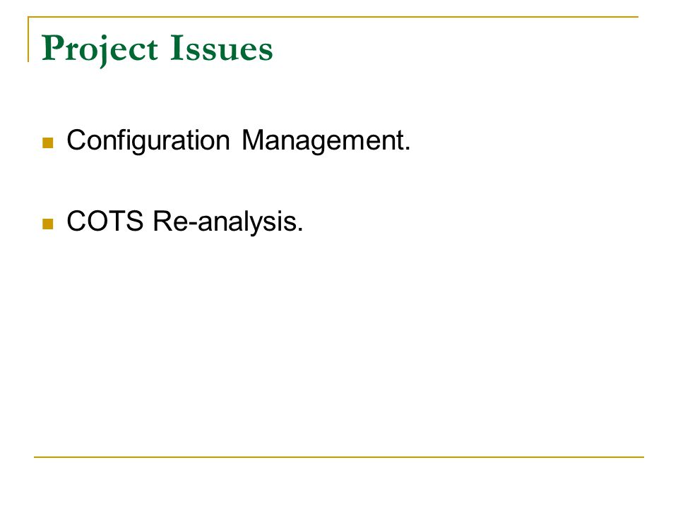 Project Issues Configuration Management. COTS Re-analysis.