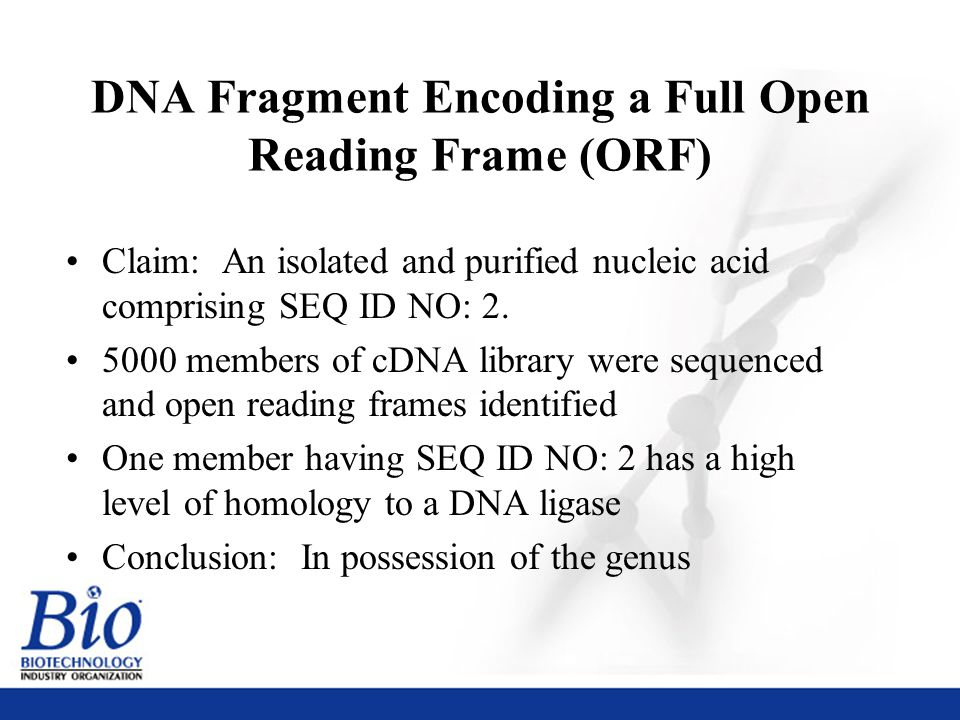 35 DNA Fragment Encoding a Full Open Reading Frame (ORF) Claim: An isolated and purified nucleic acid comprising SEQ ID NO: 2.
