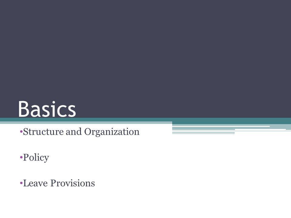 Basics Structure and Organization Policy Leave Provisions