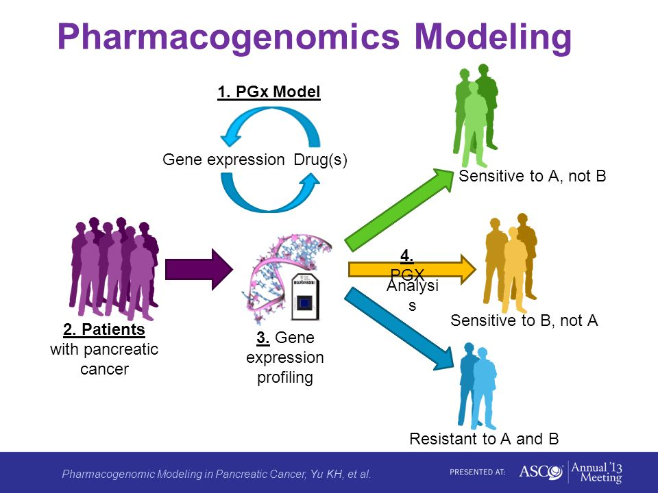 Pharmacogenomic Modeling in Pancreatic Cancer, Yu KH, et al.