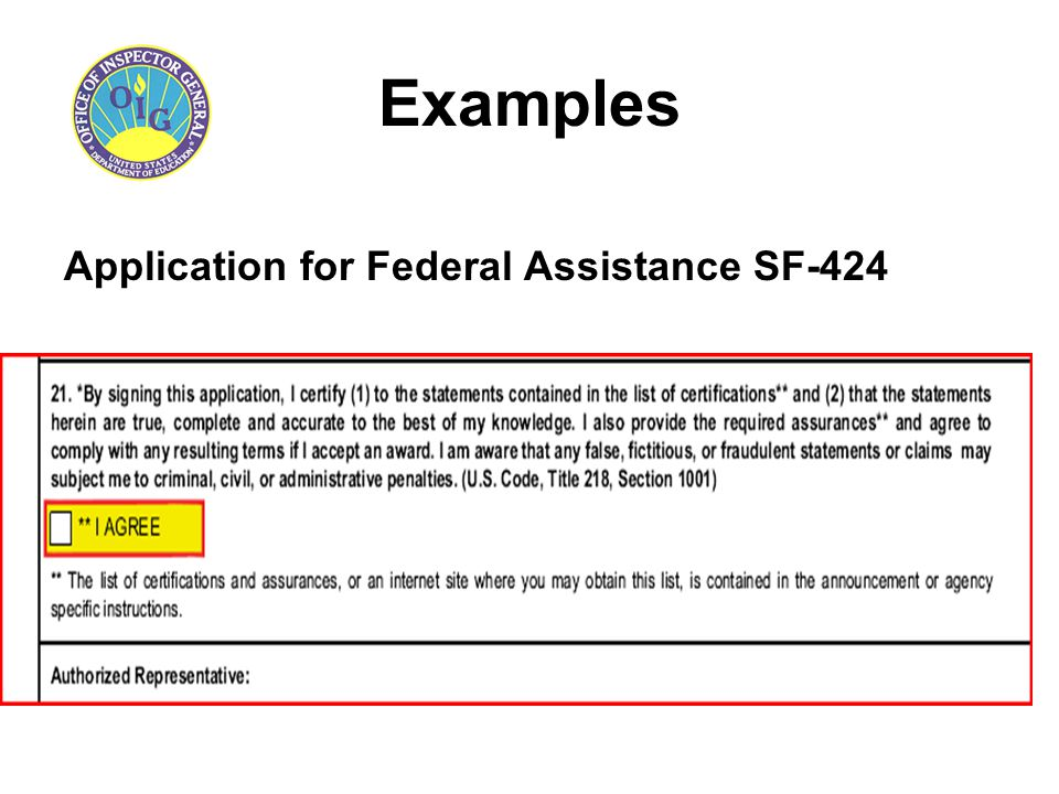 Examples Application for Federal Assistance SF-424