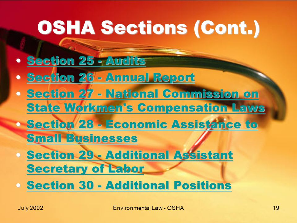 July 2002Environmental Law - OSHA19 OSHA Sections (Cont.) Section 25 - AuditsSection 25 - AuditsSection 25 - AuditsSection 25 - Audits Section 26 - Annual ReportSection 26 - Annual ReportSection 26 - Annual ReportSection 26 - Annual Report Section 27 - National Commission on State Workmen s Compensation LawsSection 27 - National Commission on State Workmen s Compensation LawsSection 27 - National Commission on State Workmen s Compensation LawsSection 27 - National Commission on State Workmen s Compensation Laws Section 28 - Economic Assistance to Small BusinessesSection 28 - Economic Assistance to Small BusinessesSection 28 - Economic Assistance to Small BusinessesSection 28 - Economic Assistance to Small Businesses Section 29 - Additional Assistant Secretary of LaborSection 29 - Additional Assistant Secretary of LaborSection 29 - Additional Assistant Secretary of LaborSection 29 - Additional Assistant Secretary of Labor Section 30 - Additional PositionsSection 30 - Additional PositionsSection 30 - Additional PositionsSection 30 - Additional Positions
