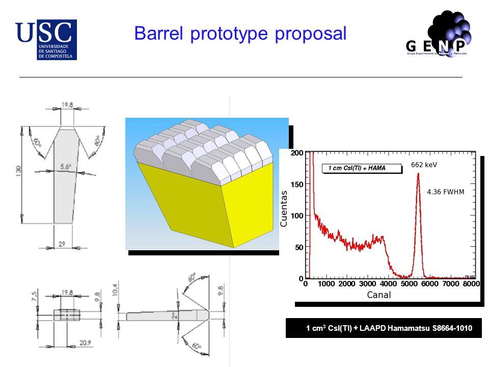 1 cm 3 CsI(Tl) + LAAPD Hamamatsu S8664-1010 Barrel prototype proposal