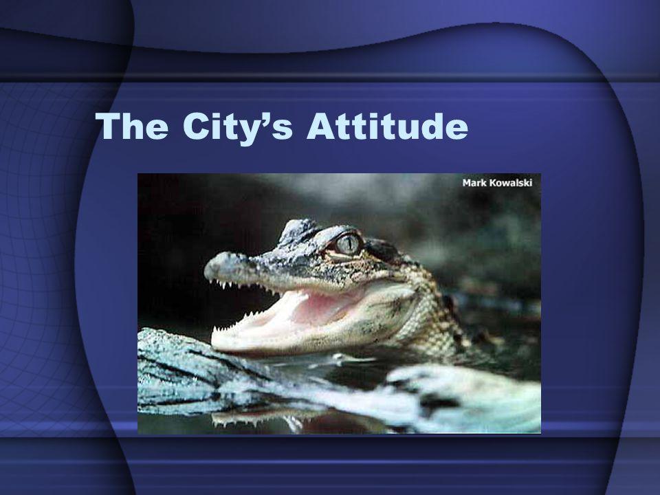 The City's Attitude