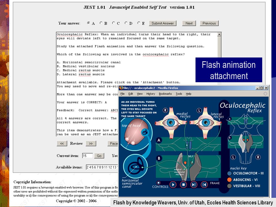 Flash animation attachment Flash by Knowledge Weavers, Univ.
