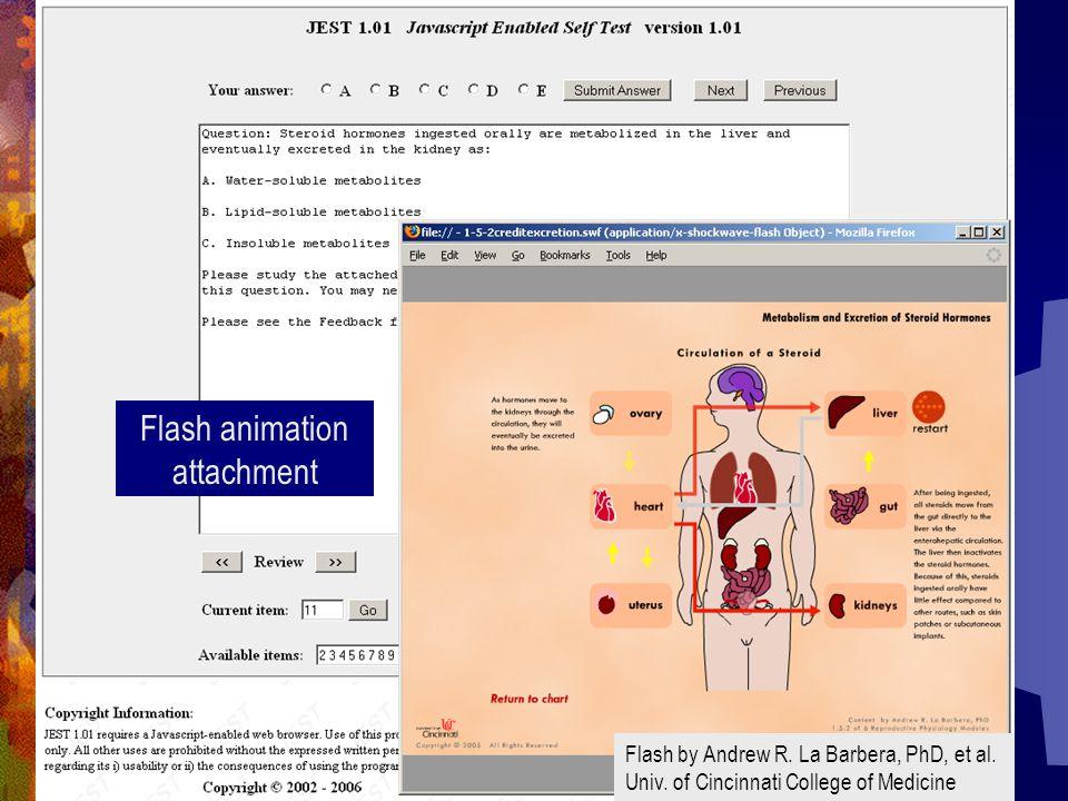 Flash animation attachment Flash by Andrew R. La Barbera, PhD, et al. Univ. of Cincinnati College of Medicine