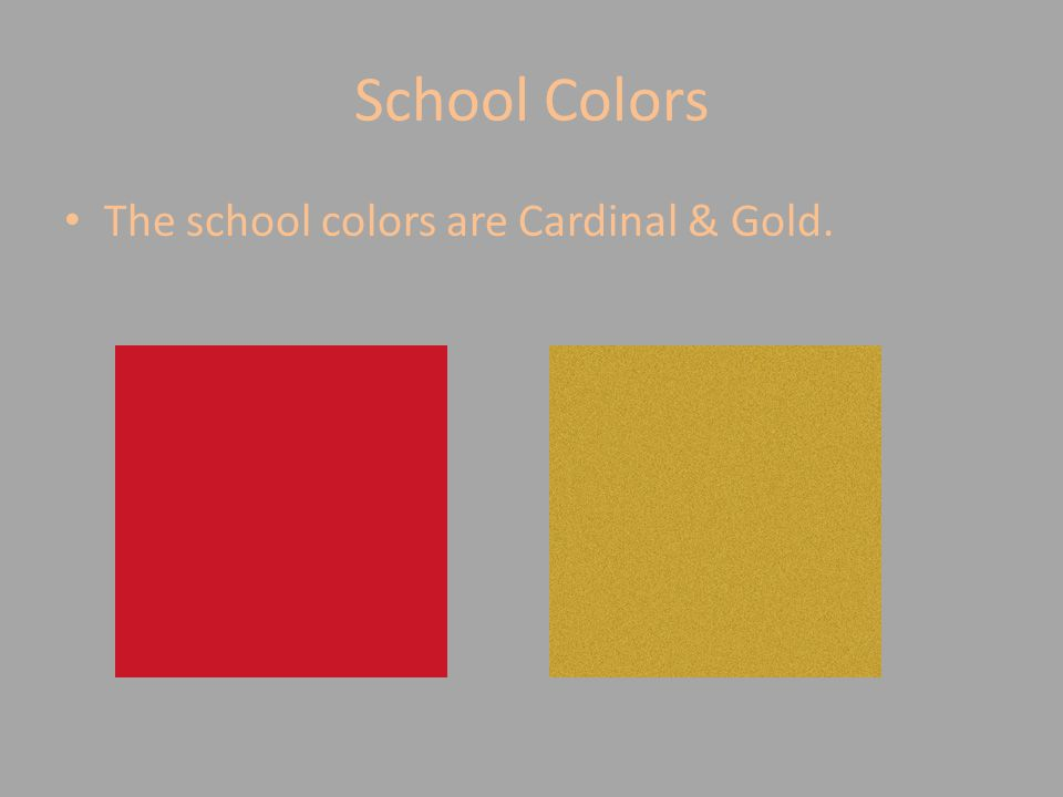 School Colors The school colors are Cardinal & Gold.