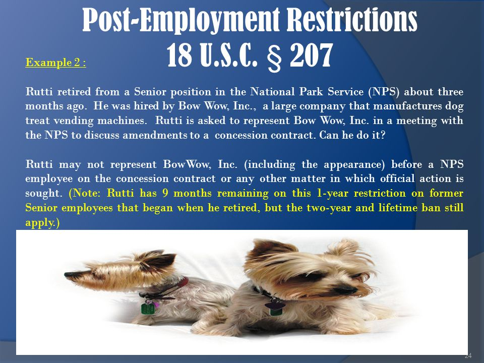 Post-Employment Restrictions 18 U.S.C. § 207 24 Example 2 : Rutti retired from a Senior position in the National Park Service (NPS) about three months