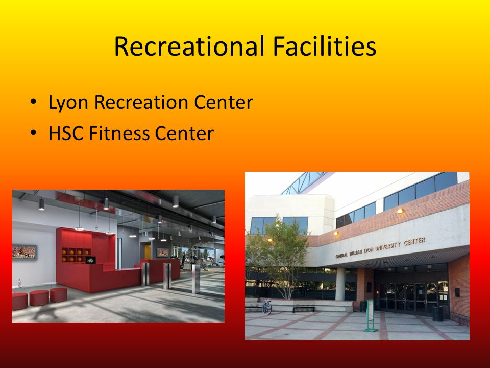Recreational Facilities Lyon Recreation Center HSC Fitness Center