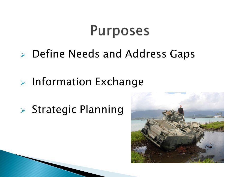  Define Needs and Address Gaps  Information Exchange  Strategic Planning