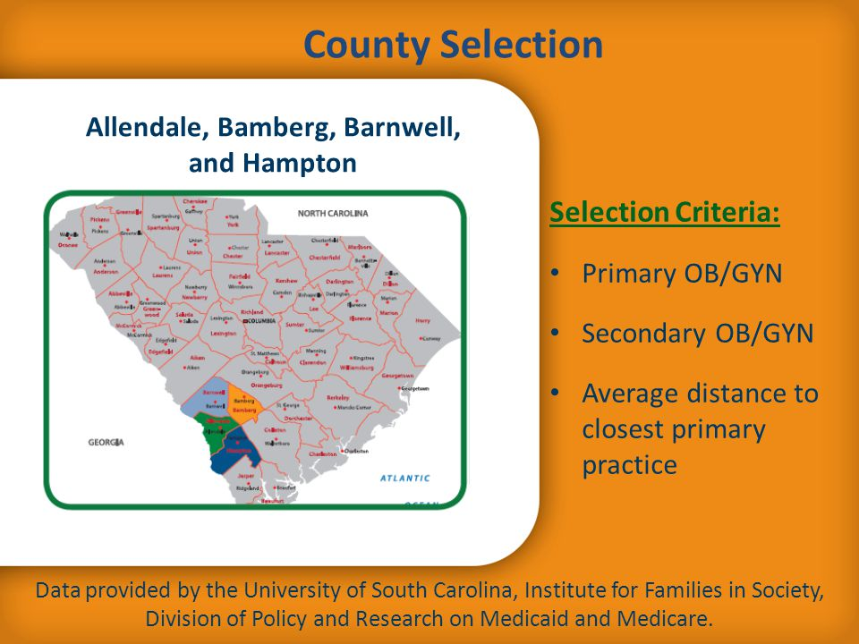 Selection Criteria: Primary OB/GYN Secondary OB/GYN Average distance to closest primary practice County Selection Data provided by the University of S