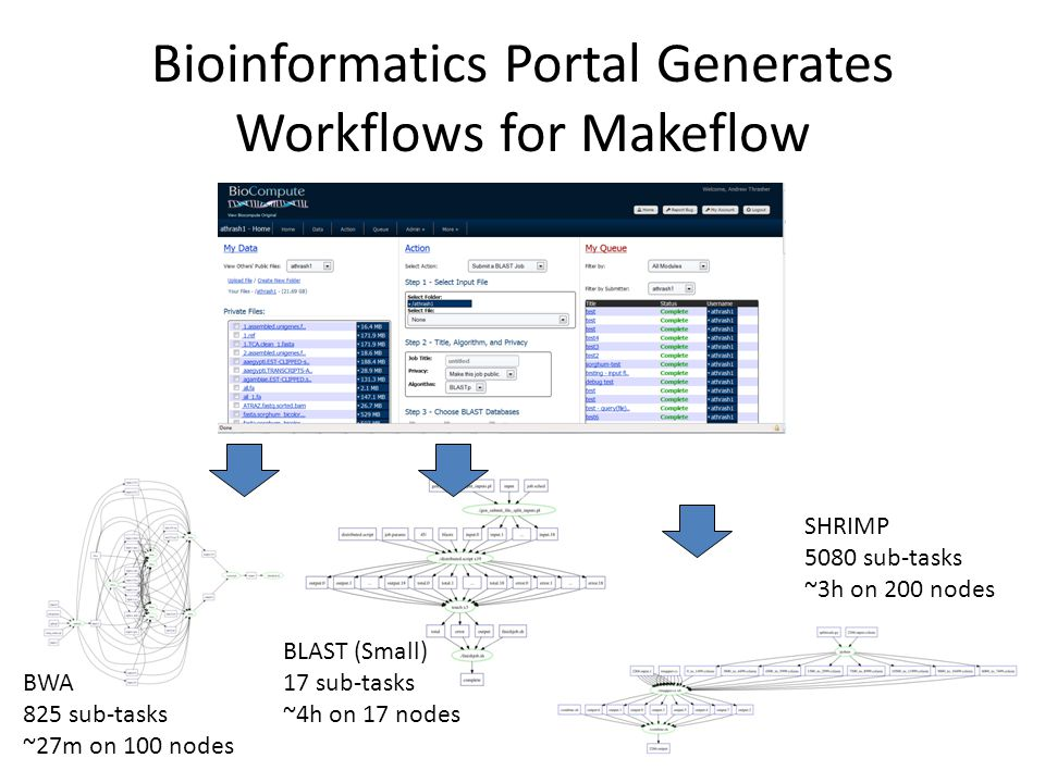 Bioinformatics Portal Generates Workflows for Makeflow 10 BLAST (Small) 17 sub-tasks ~4h on 17 nodes BWA 825 sub-tasks ~27m on 100 nodes SHRIMP 5080 s