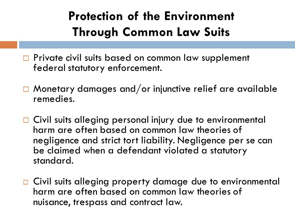 Protection of the Environment Through Common Law Suits  Private civil suits based on common law supplement federal statutory enforcement.
