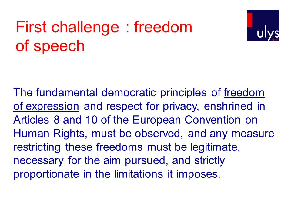 First challenge : freedom of speech The fundamental democratic principles of freedom of expression and respect for privacy, enshrined in Articles 8 an