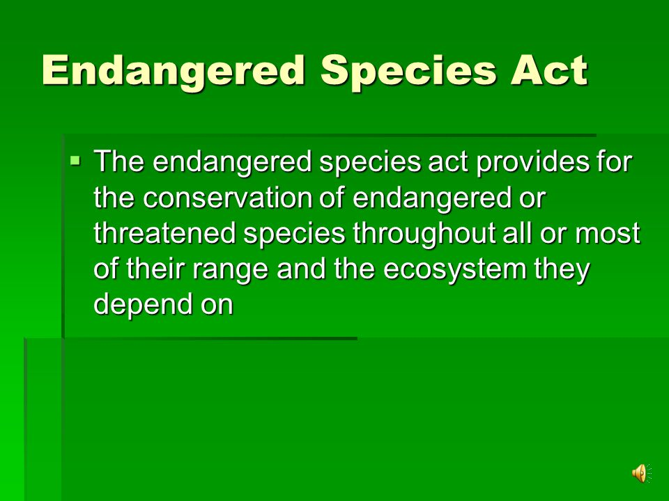 Endangered Species Act  The endangered species act provides for the conservation of endangered or threatened species throughout all or most of their range and the ecosystem they depend on