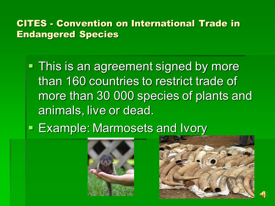 CITES - Convention on International Trade in Endangered Species  This is an agreement signed by more than 160 countries to restrict trade of more than 30 000 species of plants and animals, live or dead.