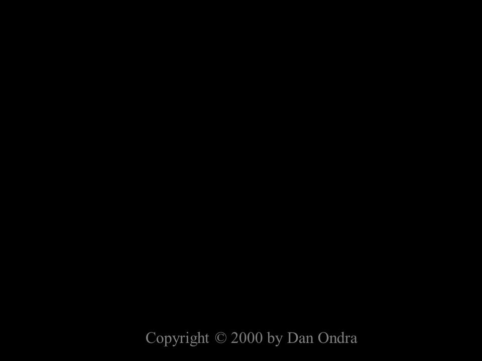 Copyright © 2000 by Dan Ondra