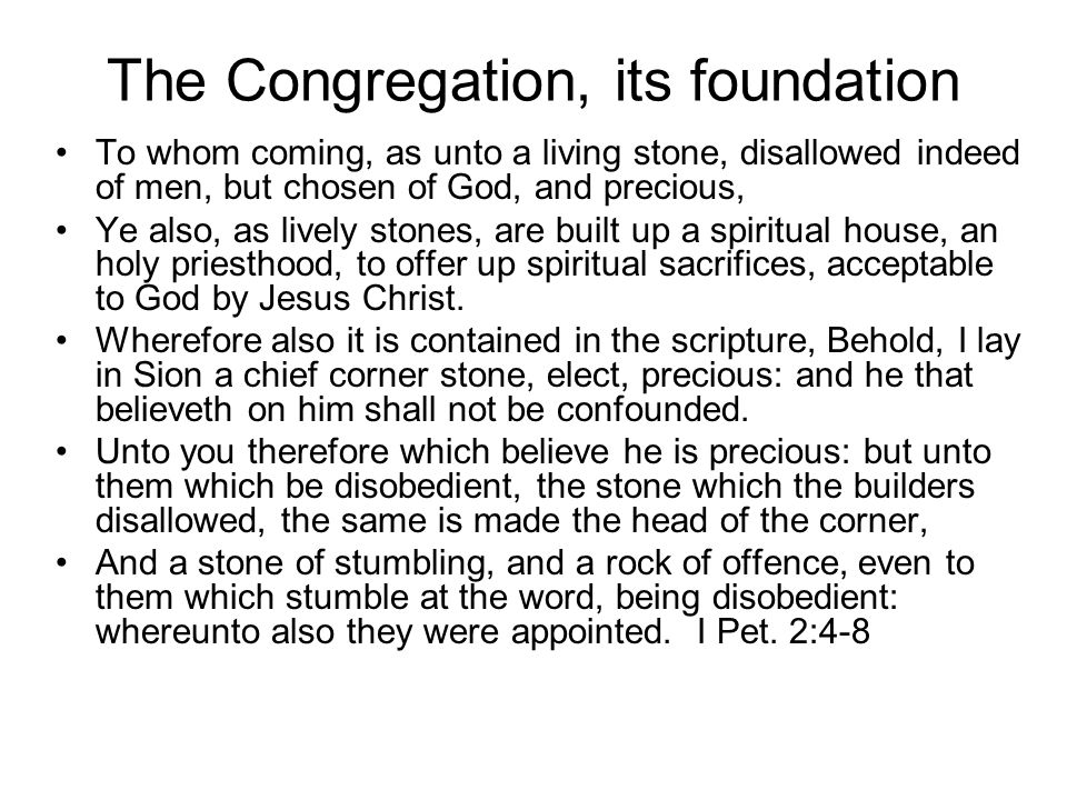 The Congregation, its foundation For through him we both have access by one Spirit unto the Father.