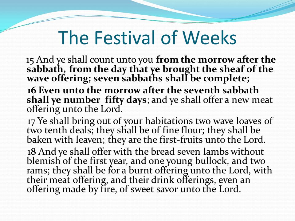 The Festival of Weeks 15 And ye shall count unto you from the morrow after the sabbath, from the day that ye brought the sheaf of the wave offering; seven sabbaths shall be complete; 16 Even unto the morrow after the seventh sabbath shall ye number fifty days; and ye shall offer a new meat offering unto the Lord.