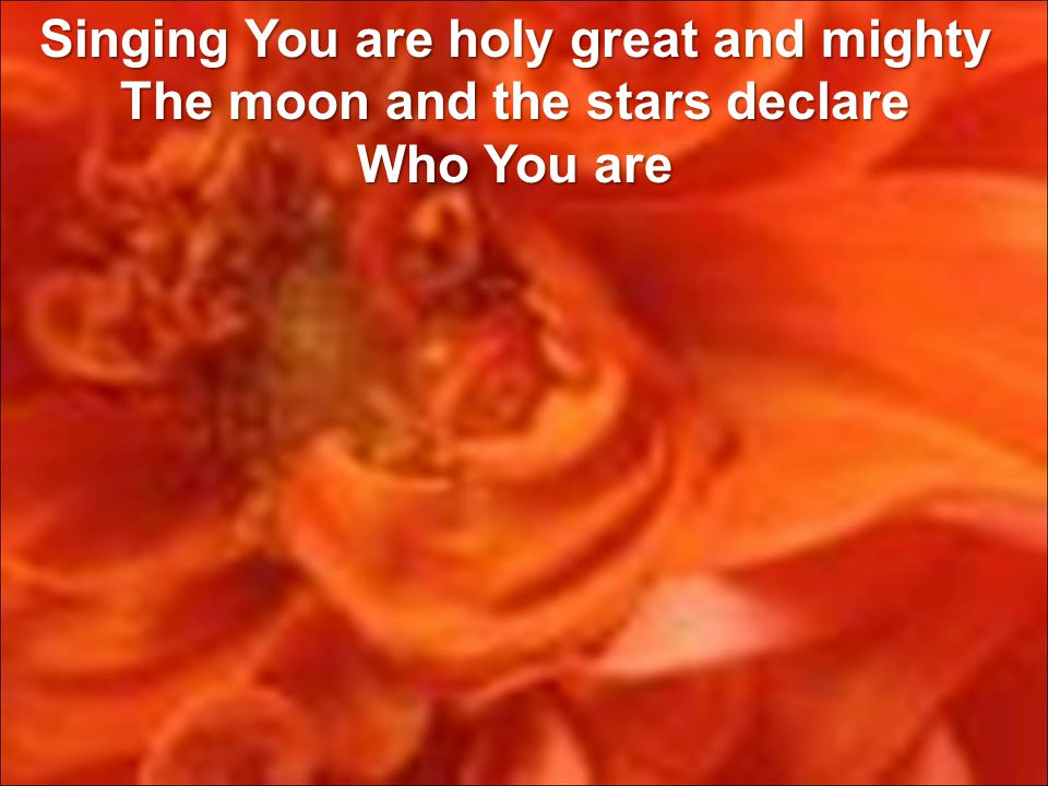 Singing You are holy great and mighty The moon and the stars declare Who You are