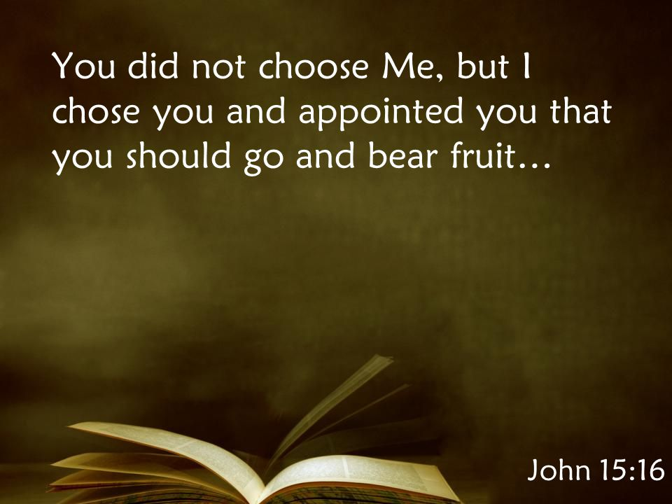 John 15:16 You did not choose Me, but I chose you and appointed you that you should go and bear fruit…