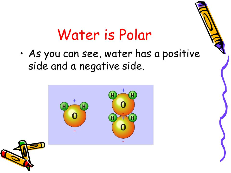 Common Polar Solvents Water: H 2 O Ammonia: NH 3 Ethanol: CH 3 OH