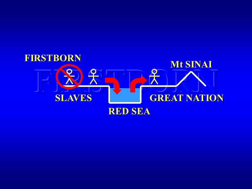 FIRSTBORN FIRSTBORN RED SEA SLAVES GREAT NATION Mt SINAI