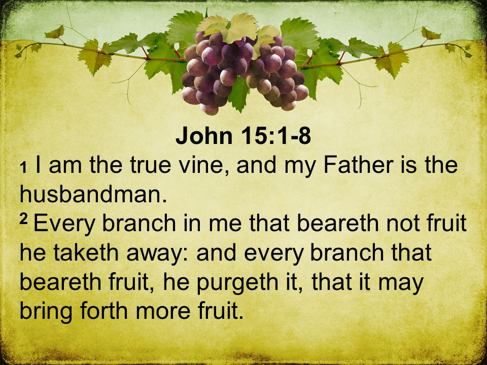 John 15:1-8 1 I am the true vine, and my Father is the husbandman.