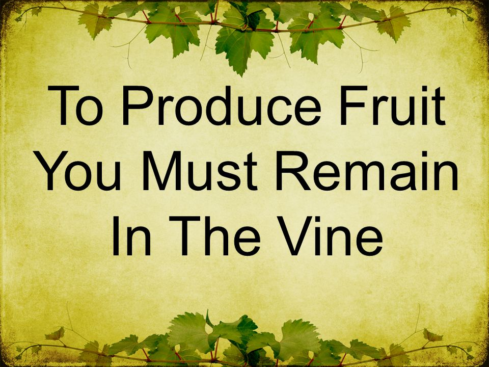 To Produce Fruit You Must Remain In The Vine