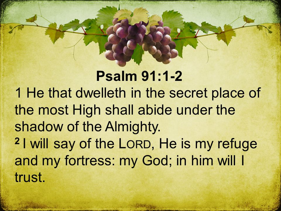 Psalm 91:1-2 1 He that dwelleth in the secret place of the most High shall abide under the shadow of the Almighty.