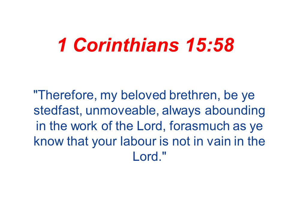 1 Corinthians 15:58 Therefore, my beloved brethren, be ye stedfast, unmoveable, always abounding in the work of the Lord, forasmuch as ye know that your labour is not in vain in the Lord.
