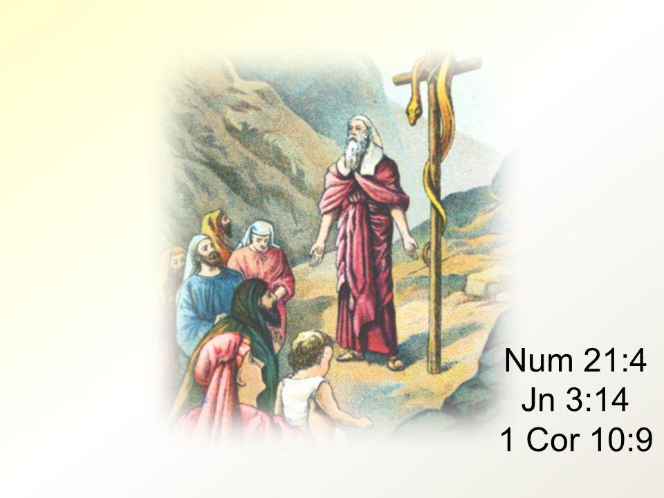 Num 21:4 Jn 3:14 1 Cor 10:9