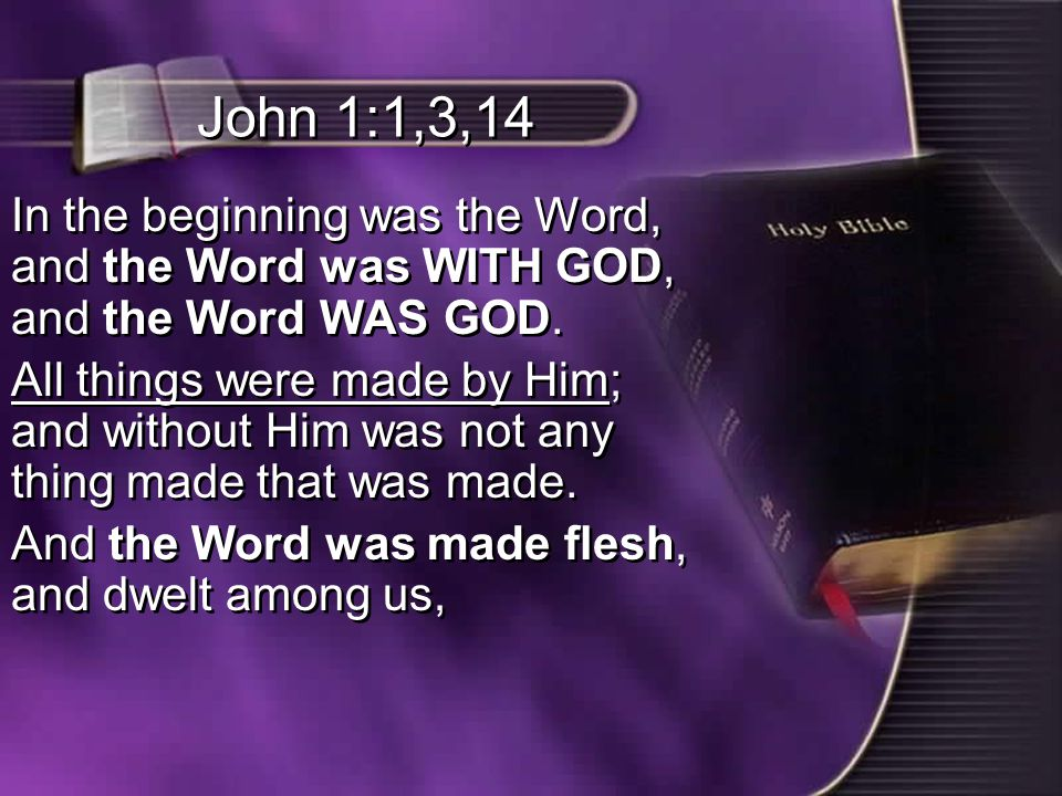 John 1:1,3,14 In the beginning was the Word, and the Word was WITH GOD, and the Word WAS GOD.