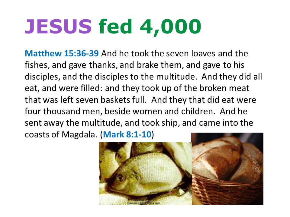 JESUS fed 4,000 Matthew 15:36-39 And he took the seven loaves and the fishes, and gave thanks, and brake them, and gave to his disciples, and the disciples to the multitude.