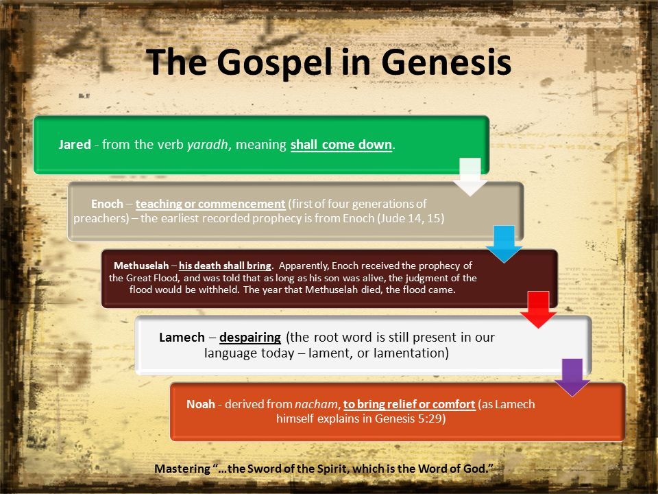 The Gospel in Genesis Jared - from the verb yaradh, meaning shall come down.