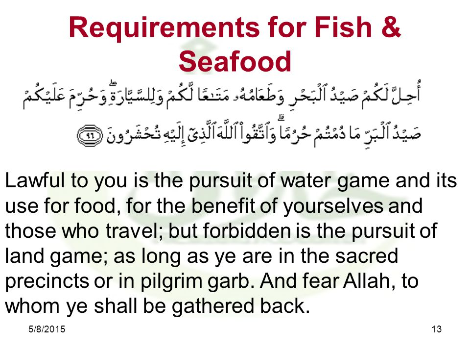 Requirements for Fish & Seafood 5/8/201513 Lawful to you is the pursuit of water game and its use for food, for the benefit of yourselves and those who travel; but forbidden is the pursuit of land game; as long as ye are in the sacred precincts or in pilgrim garb.