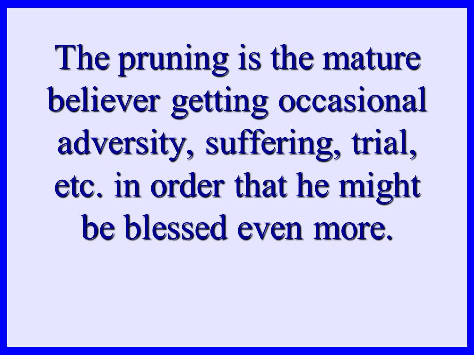 The pruning is the mature believer getting occasional adversity, suffering, trial, etc.