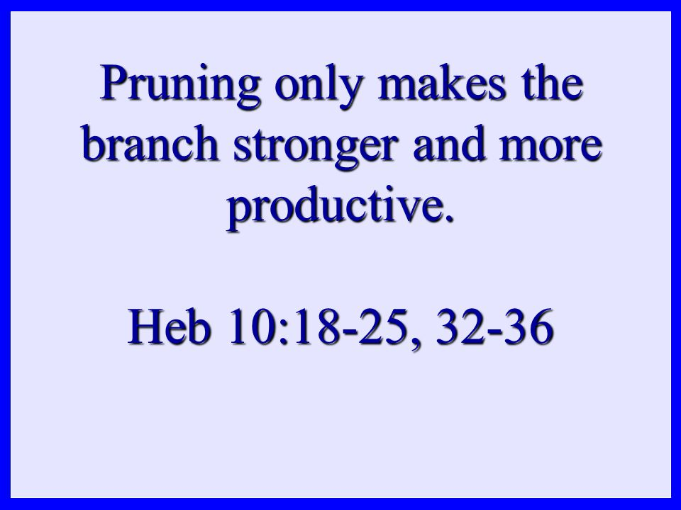 Pruning only makes the branch stronger and more productive. Heb 10:18-25, 32-36