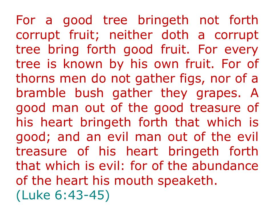 For a good tree bringeth not forth corrupt fruit; neither doth a corrupt tree bring forth good fruit.