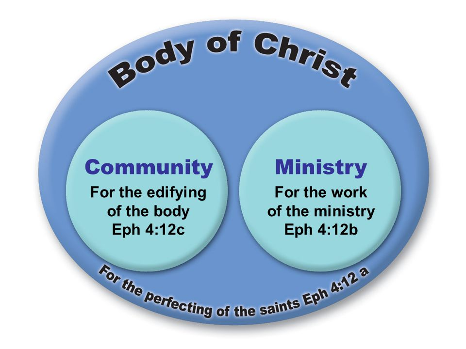 For the edifying of the body Eph 4:12c For the work of the ministry Eph 4:12b CommunityMinistry