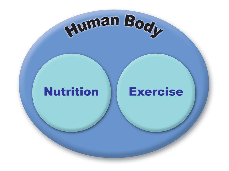NutritionExercise