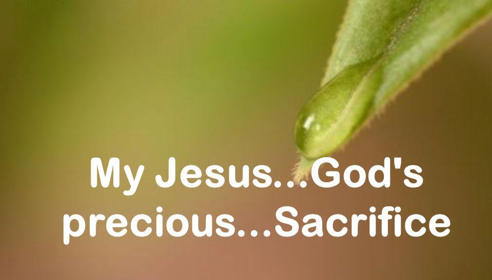 My Jesus...God s precious...Sacrifice
